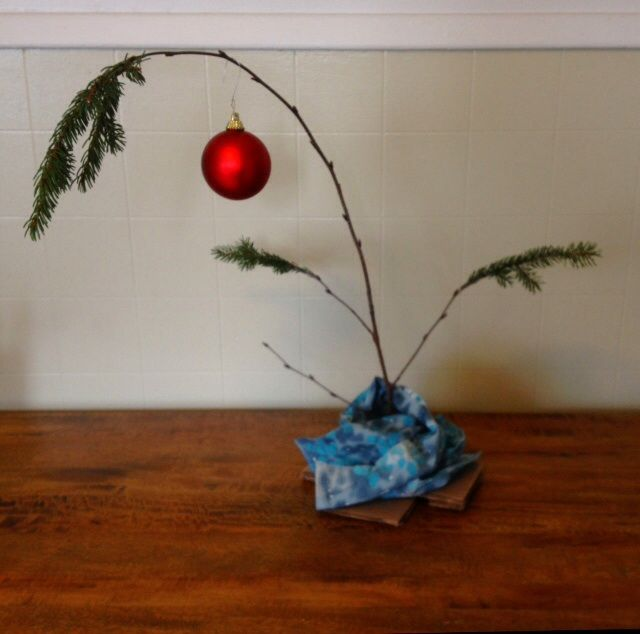 Why Christmas Trees: Holidays Are Coming