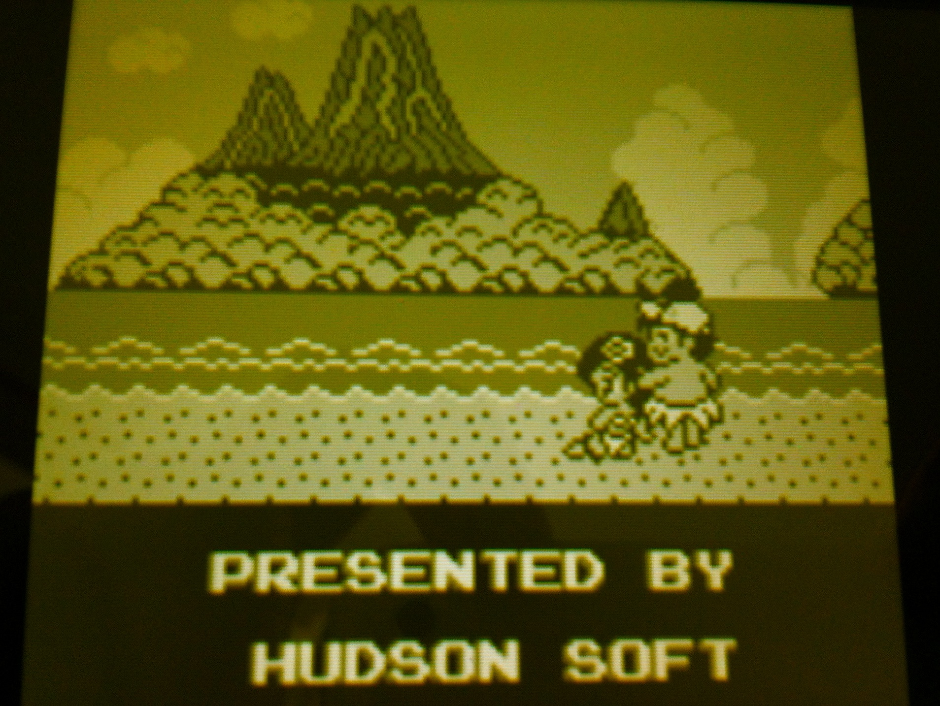 Adventure Island (3DS): COMPLETED!